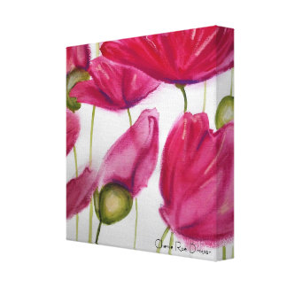 Pink Poppies on White Background Canvas Print