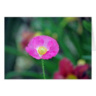 Pink Poppy II Card