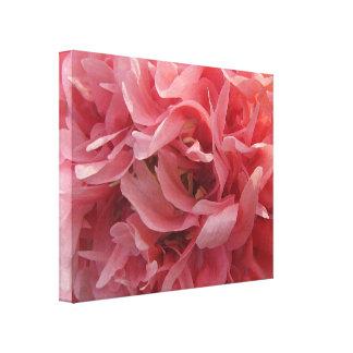 Pink Poppy Petals Canvas Print