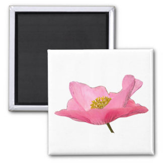 Pink Poppy Photograph Close-up 2 Inch Square Magnet