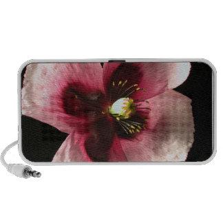 Pink Poppy Portable Speakers