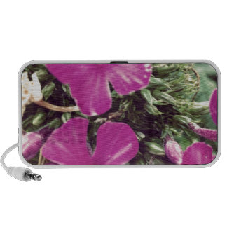 Pink Portable Speaker