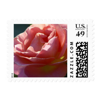 Pink Postage