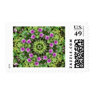 Pink Postage Stamp