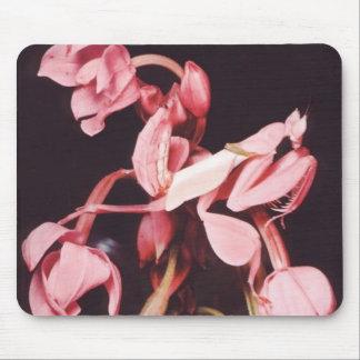 Pink Praying Mantis Camouflage Mouse Pad