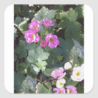 Pink Primroses Square Sticker
