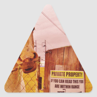 Pink Private Property Horse Triangle Sticker
