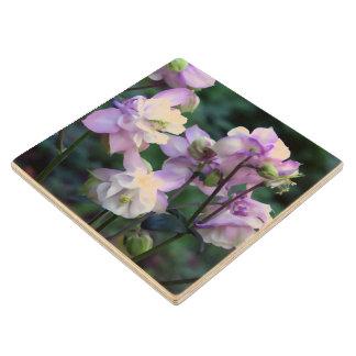 Pink Purple Columbine flowers Wooden Coaster