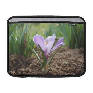 Pink Purple Crocus Vernus Flower MacBook Sleeves