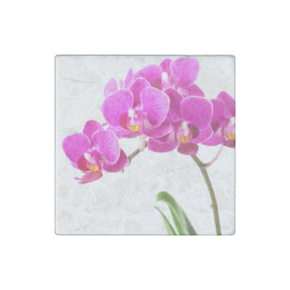 Pink Purple Dendrobium Orchid Tropical Flower Stone Magnet