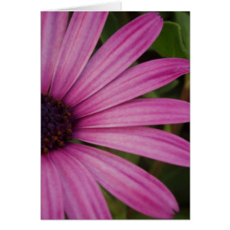Pink Purple Floral Card