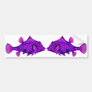 Pink & Purple Humpback Turretfish Bumper Sticker