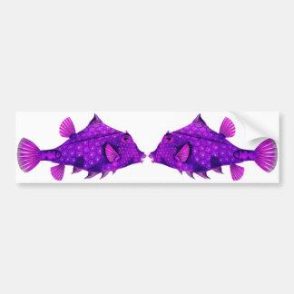 Pink & Purple Humpback Turretfish Bumper Stickers