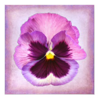 Pink Purple Pansy Flower 5.25x5.25 Square Paper Invitation Card