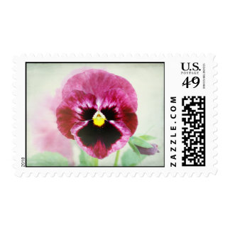 Pink Purple Pansy Flower Stamps