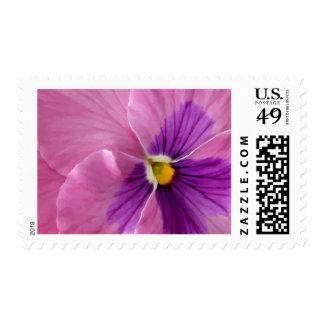 Pink Purple Pansy Flower Stamp