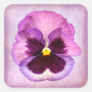 Pink Purple Pansy Flower Square Sticker