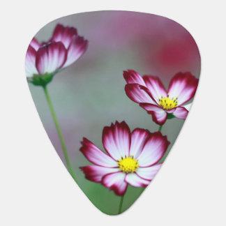 Pink Purple Vines Flowers Blossoms Love Peace Art Pick