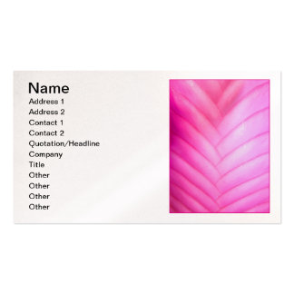 Pink Quill Bromeliad Double-Sided Standard Business Cards (Pack Of 100)
