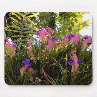 Pink Quill Bromeliad Mouse Pad