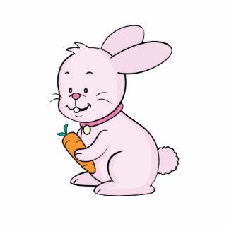 Pink Rabbit Photo Sculpture