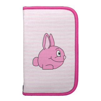 Pink Rabbit with Light Pink Stripe Background. Organizers