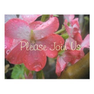 Pink Rain Postcard