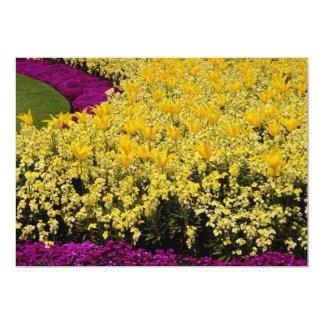 "Pink Rainbow flowerbeds flowers 5"" X 7"" Invitation Card"