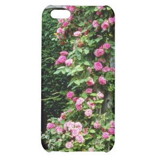 Pink Rambler Rose Francoise Juranville Over Pergol Case For iPhone 5C