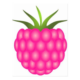Pink Raspberry or Just Berry Postcard