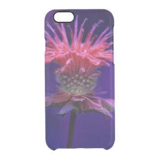 Pink Raspberry Wine Bee Balm Flower on Purple Clear iPhone 6/6S Case