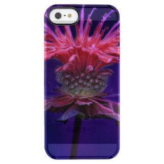 Pink Raspberry Wine Bee Balm Flower on Purple Clear iPhone SE/5/5s Case