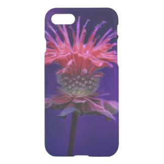 Pink Raspberry Wine Bee Balm Flower on Purple iPhone 7 Case