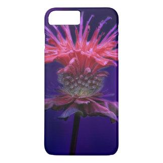 Pink Raspberry Wine Bee Balm Flower on Purple iPhone 7 Plus Case
