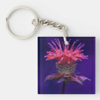 Pink Raspberry Wine Bee Balm Flower on Purple Keychain