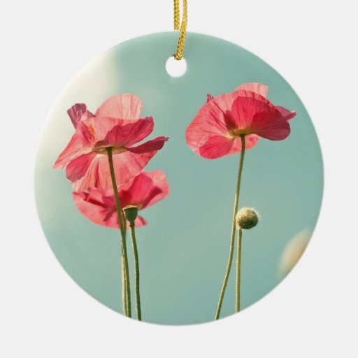 Pink/red and aqua photography Christmas ornament