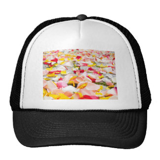 Pink Red and Yellow Rose Petals Trucker Hat