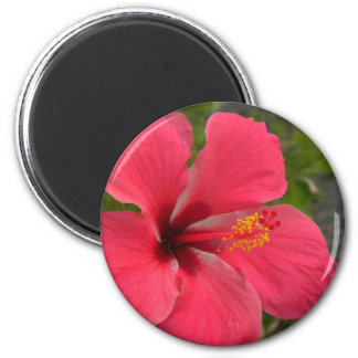 Pink & Red Hibiscus 2 Inch Round Magnet