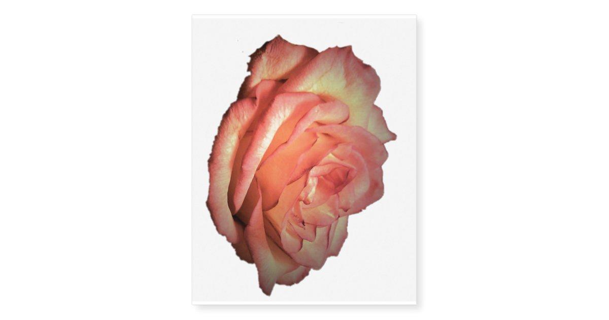 Pink Red Orange Rose Tattoo Zazzlecom