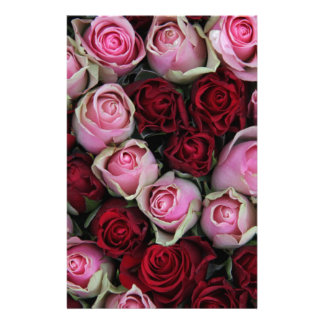 pink & red roses by Therosegarden Stationery