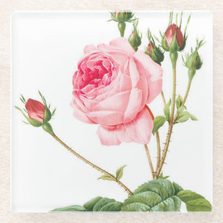 Pink Redoute Rose Glass Coaster