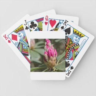 pink rhododendron bud.jpg bicycle card deck