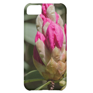pink rhododendron bud.jpg cover for iPhone 5C