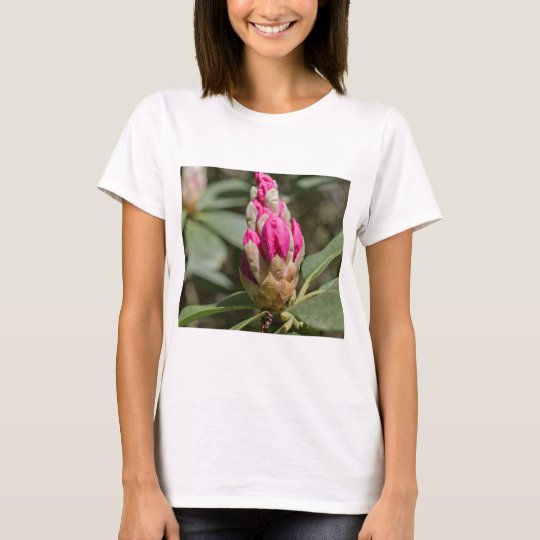 pink rhododendron bud.jpg T-Shirt
