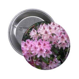 Pink Rhododendron Button