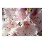 Pink Rhododendron Flower Petal in Con 2 Close 3 Business Cards