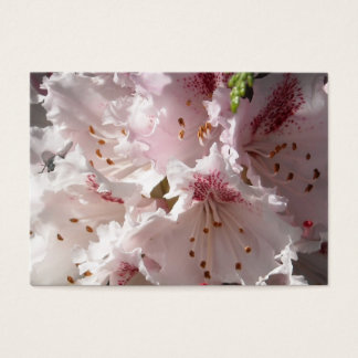 Pink Rhododendron Flower Petal in Con 2 Close 3 Business Card