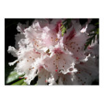Pink Rhododendron Flower Petal in Contrast 2 Close Business Cards