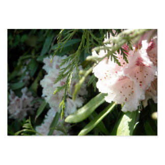 Pink Rhododendron Flowers and Cedar Large Business Card