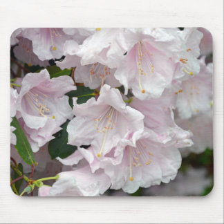 Pink rhododendron flowers in full bloom mouse pad